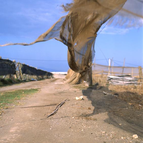 Dans - Spanje 2004