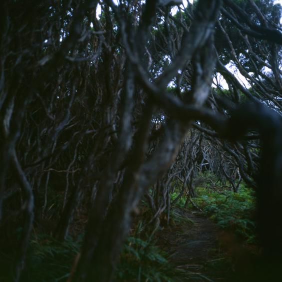Eden - Australië 2005